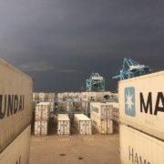 containers bij apm terminals rotterdam
